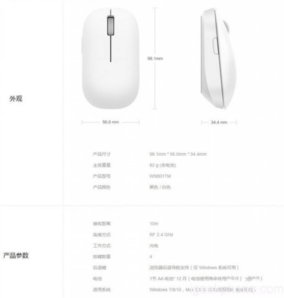 mouse-2